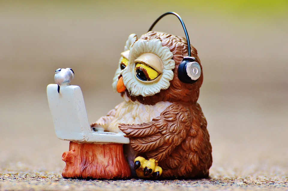 Owl-Computer-Headphones-Laptop-Funny-Notebook-947734