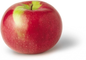 Macintosh Apples preuzeta s bulknaturalfoods.com